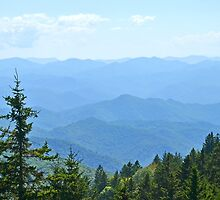 Blue Ridge Mountains - horizontal by Brittany Scales