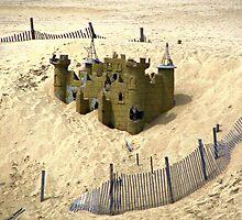 Sand Castle by Monnie Ryan
