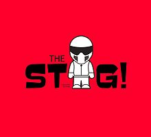 The Stig by jimcwood