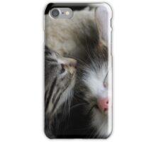 Kisses to Sleeps iPhone Case/Skin