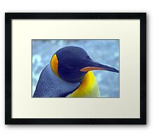 Colorful Penguin Framed Print