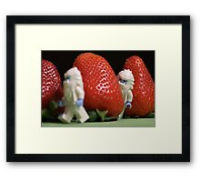 Hide n' Seek in the Strawberry Forest Framed Print