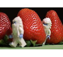 Hide n' Seek in the Strawberry Forest Photographic Print