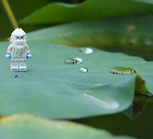 Yeti on a Lily pad by emmkaycee