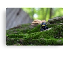 Forest Ninja  Canvas Print