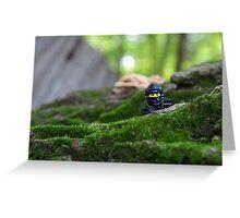Forest Ninja  Greeting Card