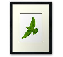 Forest Bird Framed Print