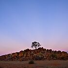Outback Australia by Dilshara Hill