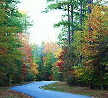 drive at the Pocohantas park by ANNABEL   S. ALENTON