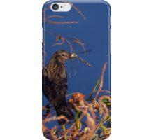 Bird eating a dragonfly iPhone Case/Skin
