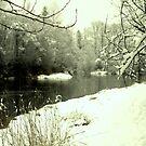 winter lake by Savannah Regier