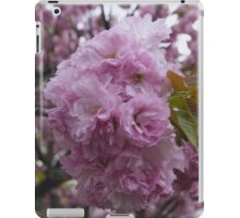 Cherry Blossoms [Washington DC] iPad Case/Skin