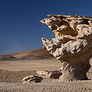 Stone Tree by DianaC