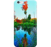 Fall Water Tree iPhone Case/Skin