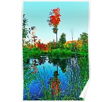 Fall Water Tree Poster