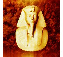 Pharaoh by Sarah Kirk Photographic Print