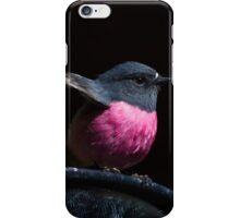 ~ Pink Robin ~ iPhone Case/Skin