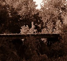 Old Railroad Bridge by Nathan Little