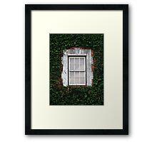 The Ivy Window Framed Print