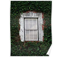 The Ivy Window Poster