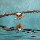 Bald Eagle on Misty Lake by Tarrby