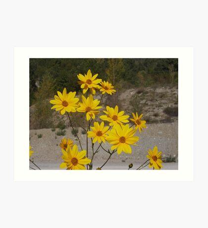 .....yellow flowers for you. italia - europa -..my beloved Anna ! .adorata Anna sei solo  tu...annamaria.  - 3500 visualizzaz.2014.FEATURED RB EXPLORE 15 GENNAIO 2012-- Art Print