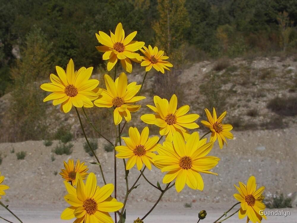 .....yellow flowers for you. italia - europa -..my beloved Anna ! .adorata Anna sei solo  tu...annamaria.  - 3500 visualizzaz.2014.FEATURED RB EXPLORE 15 GENNAIO 2012-- by Guendalyn