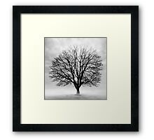 Silent Tree Framed Print