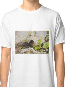 Sunset Nap Classic T-Shirt