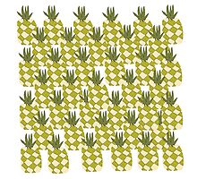 Pile of Pineapple  Photographic Print