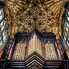 Organ Pipes by Vicki Field