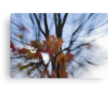 Abstract Impressions of Fall - Maple Leaves and Bare Branches Canvas Print
