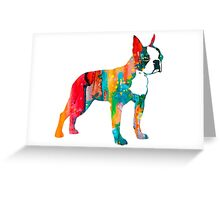 Boston Terrier 2 Greeting Card