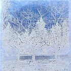Landscape | Blue Winter Trees by Nadia Bonello