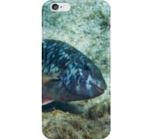 This Smile Gets Them Every Time:-) iPhone Case/Skin
