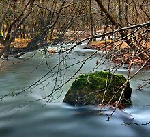 Vouraikos river - Achaia by Hercules Milas