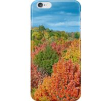 Cut River Autumn Color iPhone Case/Skin