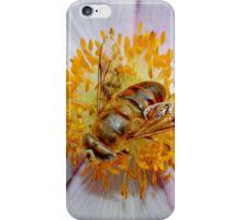Mmmmm Juicy Nectar iPhone Case/Skin