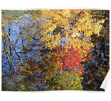 Reflections of an Autumn Morning Poster