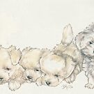 Maltese Puppies by BarbBarcikKeith