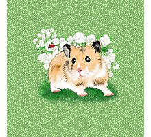 Cute Golden Syrian Hamster by LeahG Photographic Print