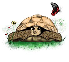 Fun Cartoon Tortoise Art by LeahG by Cartoonistlg