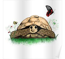 I Love my Tortoise cute cartoon Poster