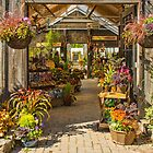 A Perfect Gardener's Place by Marilyn Cornwell