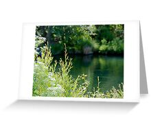 Putah Creek Greeting Card