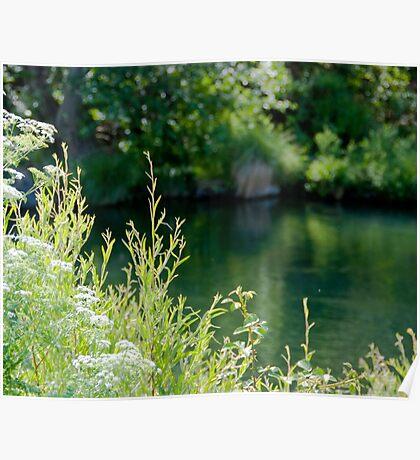 Putah Creek Poster