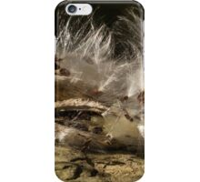 Seeds on Stone iPhone Case/Skin