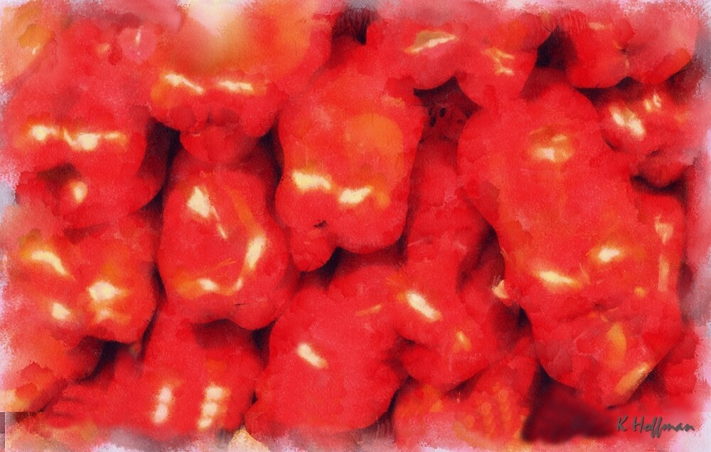 Peppers by Kenneth Hoffman