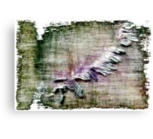 Alien Lifeform Canvas Print