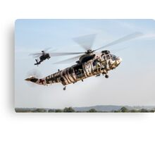 Sea King and Apache Helicopters Canvas Print
